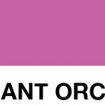 How to Use Radiant Orchid in Your Home [Infographic]