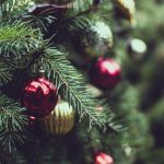 How to Choose & Care for a Real Christmas Tree